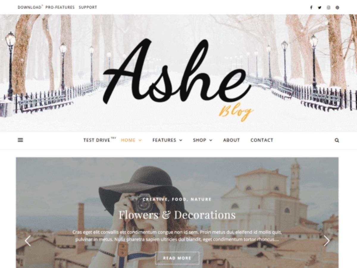 Ashe free wordpress theme