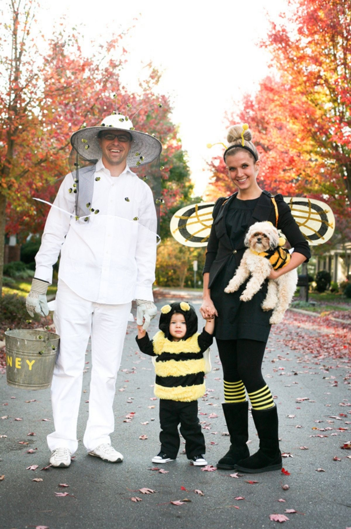 Bee and beekeeper costumes